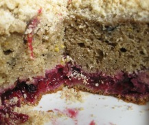 Midsummer's Black Currant Rhubarb Cake