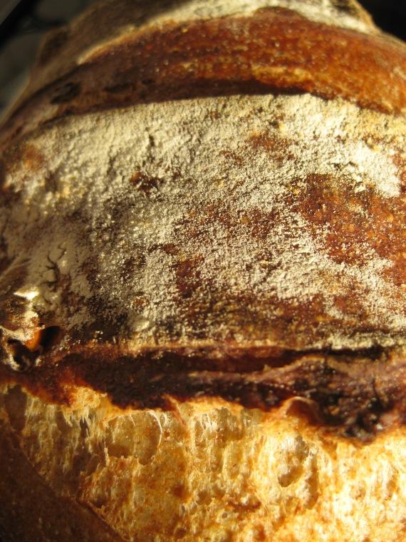 Sourdough Bread with Walnuts and Raisins