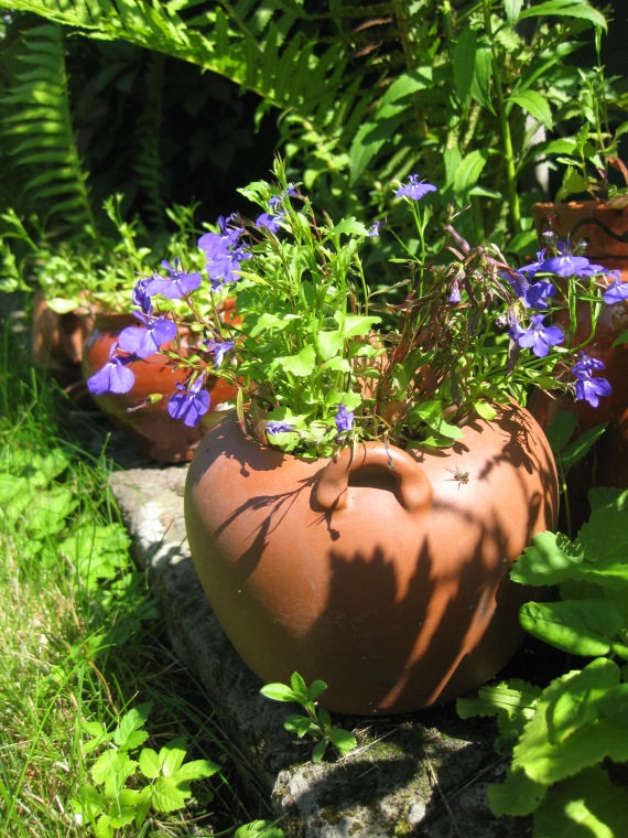 recycling teapots