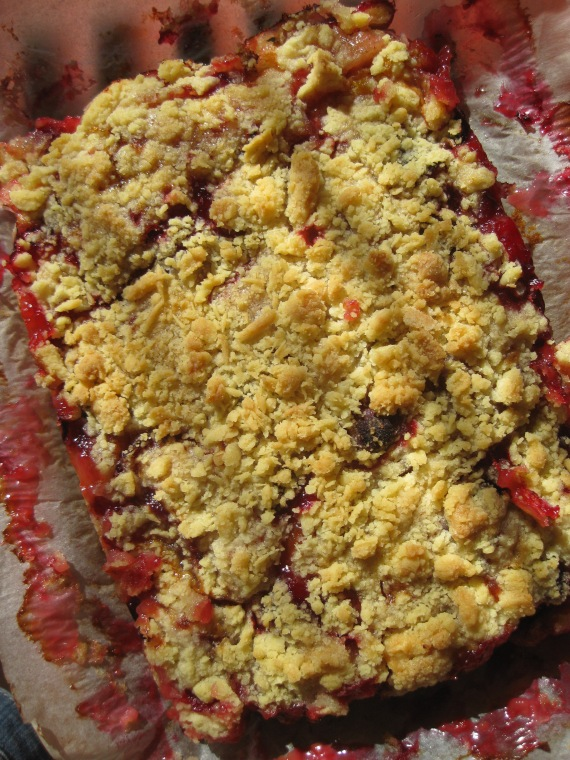 Viennese Plum Cake from www.mykitchensnippets.com