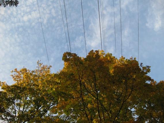 Autumn Sky in St Pete