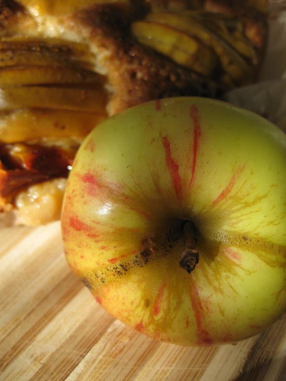 Sunken Apple and Honey Cake from smittenkitchen.com