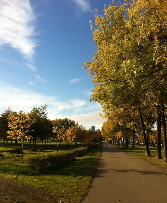 Autumn in St Pete