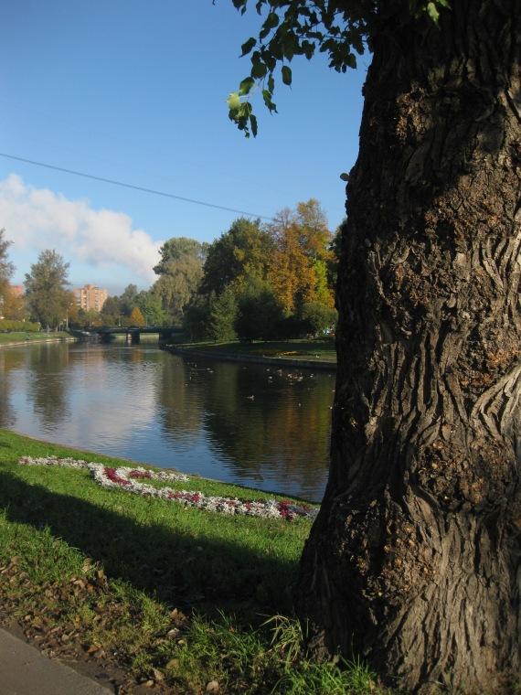 Autumn in Kolpino