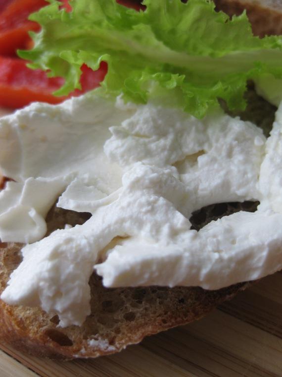 Homemade Basa Cheese from honestcooking.com