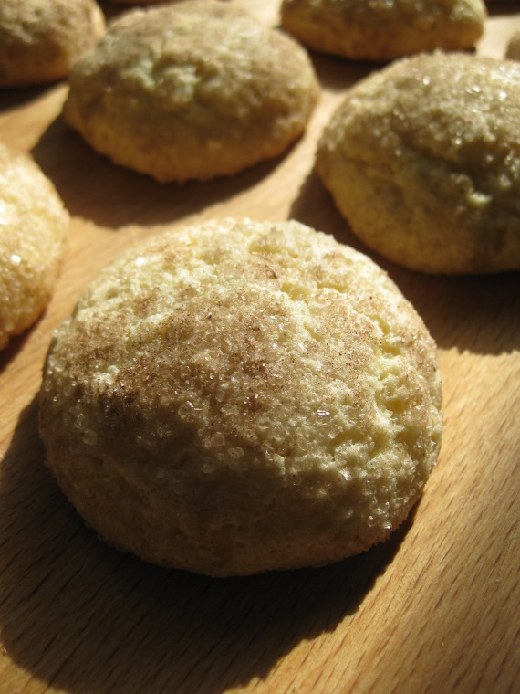 Sour Cream Snickerdoodles from www.evilshenanigans.com