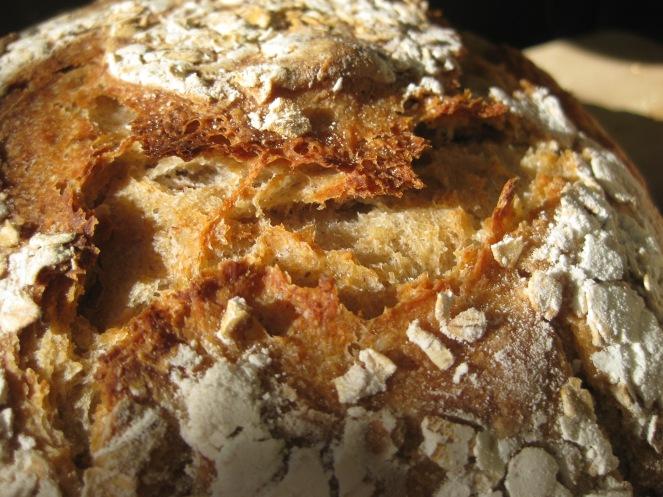 Rolled Oat Sourdough Boule from www.ashaggydoughstory.com
