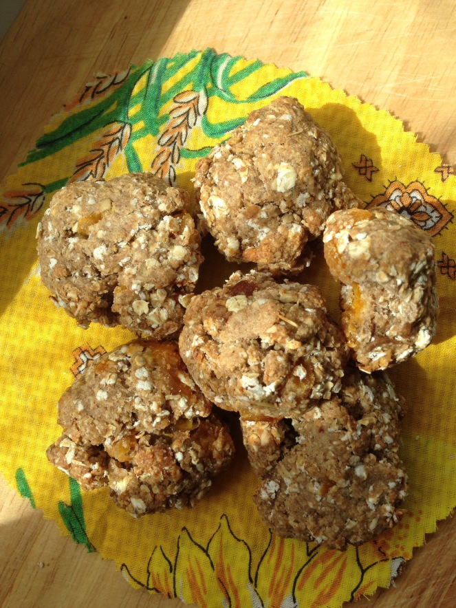 Sugarless Oatmeal Cookies