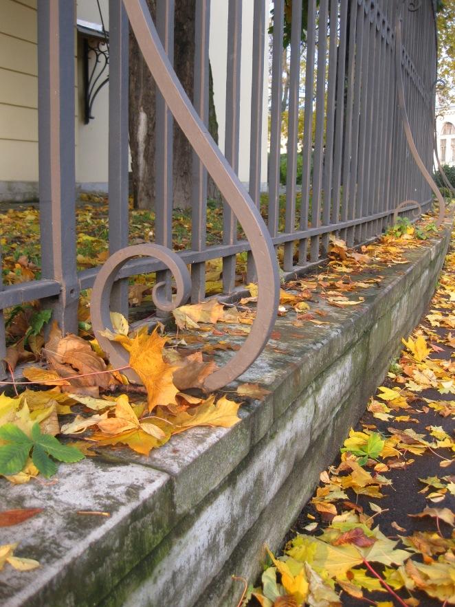 A Snapshot of Golden Autumn in St Petersburg