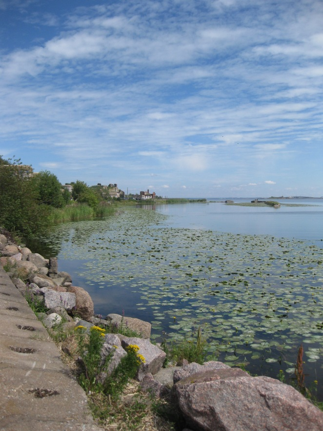 Kronstadt, its Fort and Koporye Fortress